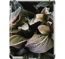 licking frost iPad Case/Skin