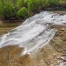 Alongside Thistlethwaite Falls by Kenneth Keifer