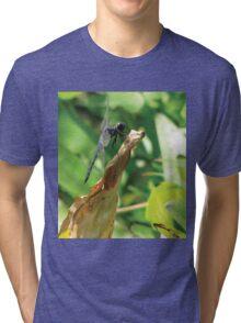 Beautiful Dragonfly Tri-blend T-Shirt