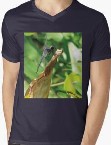 Beautiful Dragonfly Mens V-Neck T-Shirt