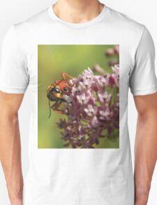 Big Scary Wasp T-Shirt
