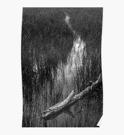 Flooded Meadow Poster