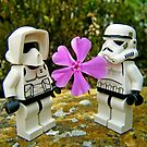 Trooper Love by HRLambert