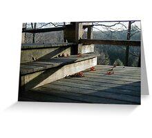 shadowed deck Greeting Card