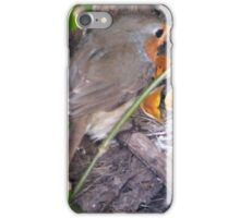 Family of Robins iPhone Case/Skin