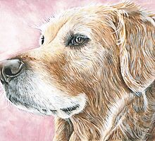 Faithful Companion - Labrador by SpiritOfFaith