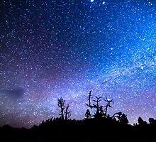 Cosmic Kind Of Night by Bo Insogna