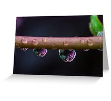 The rain Greeting Card