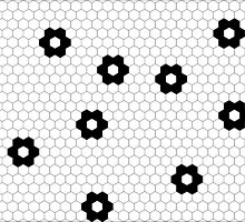 hexagon flowers by ElisaGabi