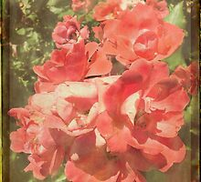 vintage flowers 2 by Angelafaye