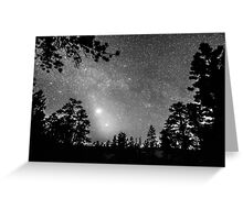Forest Silhouettes Constellation Astronomy Gazing Greeting Card