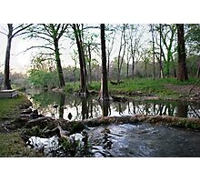 Cypress Creek Photographic Print