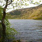 Gougane Barra Lake by Georgia Conroy