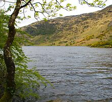 Gougane Barra Lake by GeorgiaConroy