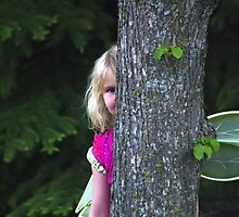 A Fairy Sighting by DiEtte Henderson