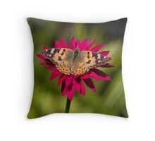 Painted lady butterfly -Vanessa cardui Throw Pillow