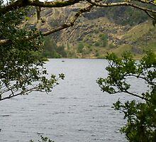 Gougane Barra Lake 3 by GeorgiaConroy