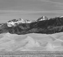 Great Sand Dunes National Park Panorama BW by Bo Insogna