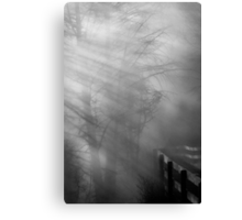 Breaking Through Canvas Print