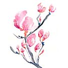 Japanese Magnolia by Brazen Edwards