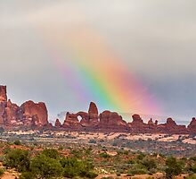 Rainbow Down by Bo Insogna