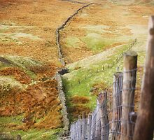 Dales Divisions by SteveMG