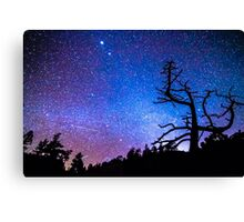 Space The Final Frontier Canvas Print