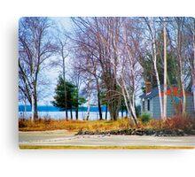 Springtime in Northern Ontario Metal Print