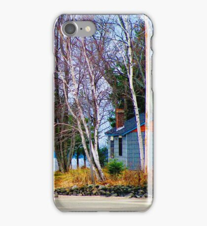 Springtime in Northern Ontario iPhone Case/Skin