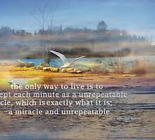 """Dedicated to the  """"Miracle of life """" by Kelly  McAleer"""
