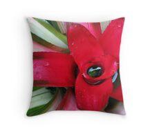 Red Bromelia Throw Pillow