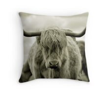 Are you talkin' to me? Throw Pillow