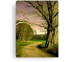 Scary trees Canvas Print