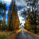 Autumn - Central West NSW - The HDR Experience by Philip Johnson