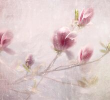 Whisper of Spring by AnnieSnel