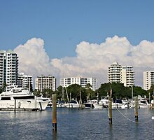 Sarasota Cityscape by June Holbrook