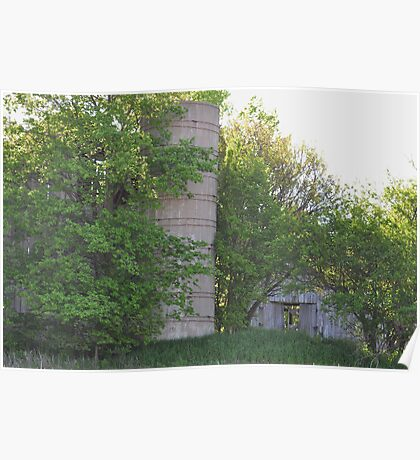 Silo and barns behind trees Poster