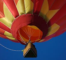 Hot air balloon flight by Luann wilslef
