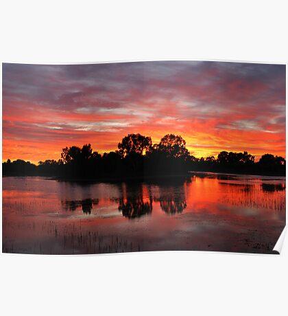 Sunrise Island Newy reservoir Cobar NSW Poster