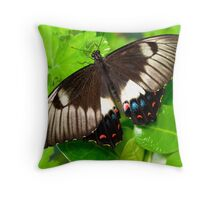 Dainty Swallowtail butterfly Throw Pillow