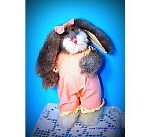 Boyds Bunny Photographic Print