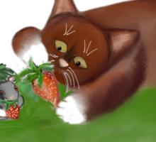 Strawberries for Mouse and Kitten Sticker