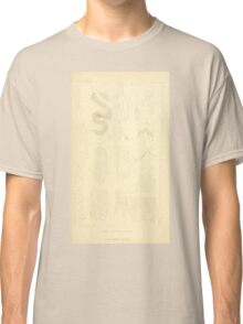 The Animal Kingdom by Georges Cuvier, PA Latreille, and Henry McMurtrie 1834  410 - Insecta Insects Classic T-Shirt