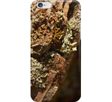 Twelve parts of a Tree (2) iPhone Case/Skin