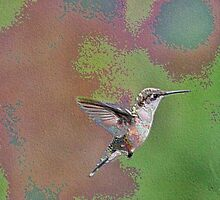 Enamel Hummingbird by BOLLA67