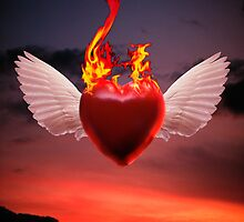 Burning Love by Miguel Dominguez