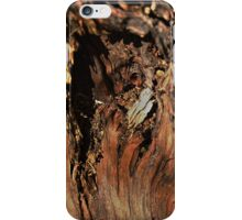 Twelve parts of a Tree (4) iPhone Case/Skin