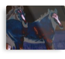 dark horse(s) Metal Print