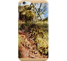 Twelve parts of a Tree (5) iPhone Case/Skin