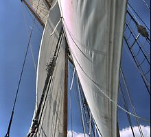 Sailing with the wind. by Larry Lingard-Davis